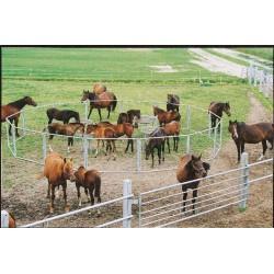 Le panneau sélectif avec piquet  chevaux la gée